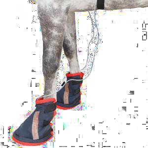 hoof-boots-300×300