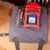 activo med equine power pads treatment l animal therapeutics