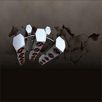 horse solarium by activo-med